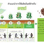 วัคซีนพืชบิ๊ก กับ ต้นกาแฟ