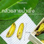 85c2d460-2-banana-008